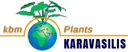 Φυτά Καραβασίλης